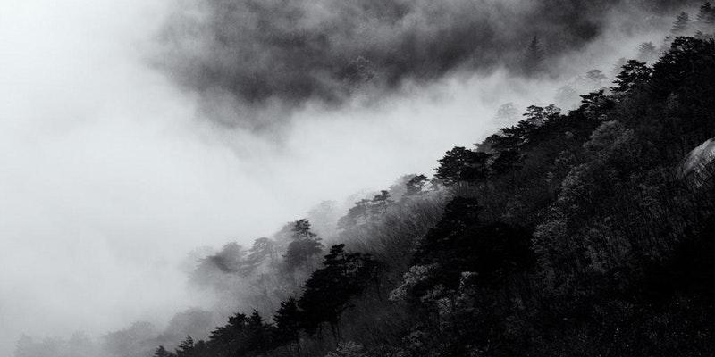 Bluecoat: dot-art, Beginners Digital Photography