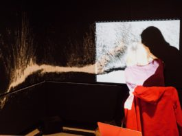 Warrington Museum & Art Gallery: Haecceity: Tracy Hill