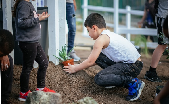 Liverpool Biennial 2018: Granby Gardening Club