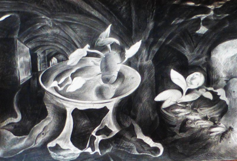 Williamson Art Gallery & Museum: Drawn from Life Experience - Jonathan Kennedy