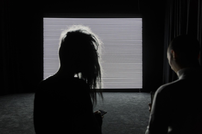 FACT: Curator Tour