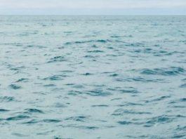 LightNight 2019 - The Oratory: Sea Fever - Revolutionary Nature