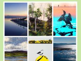 Seagrass Studio: Layered Views