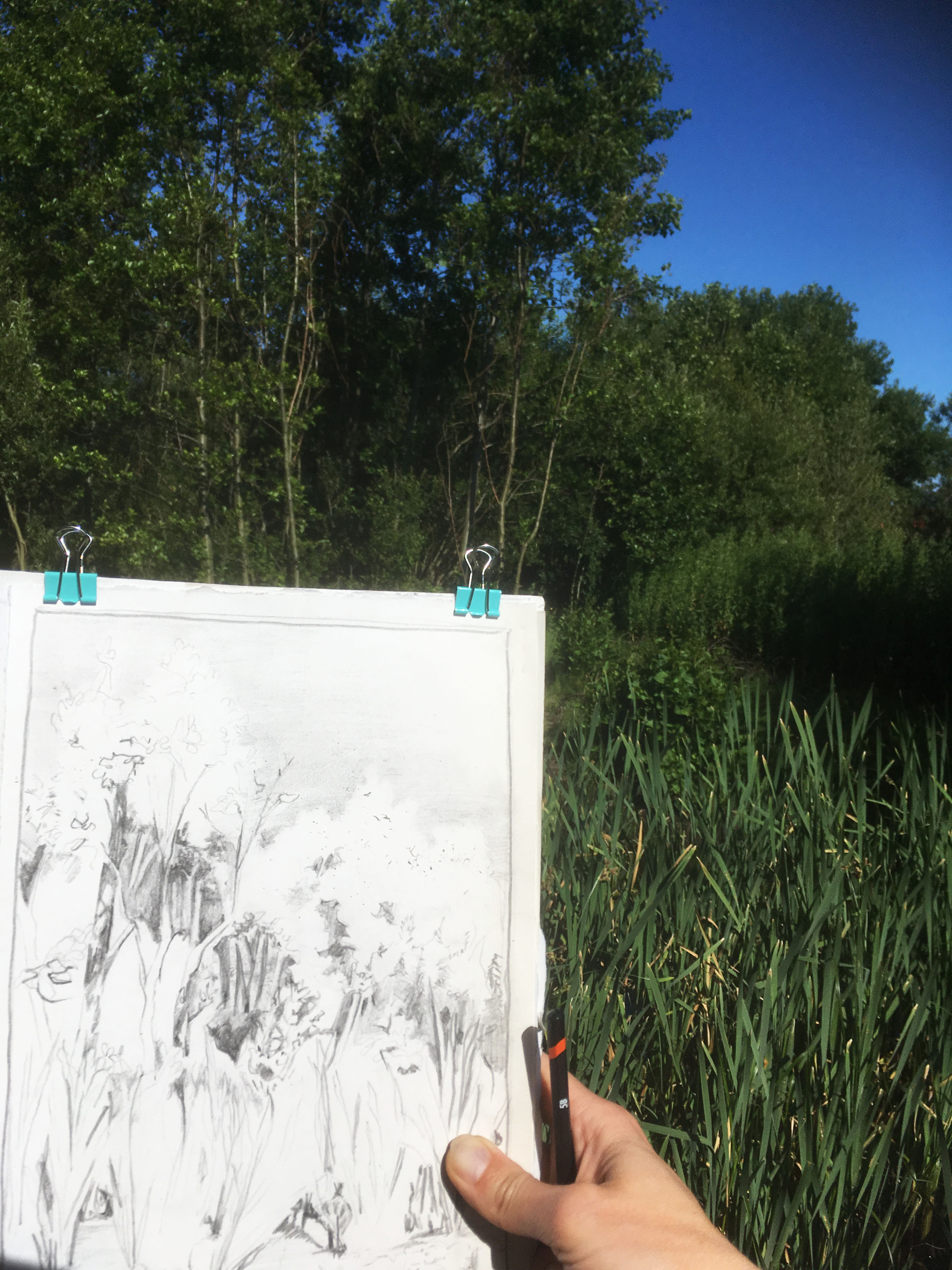 Crosby Marine Lake: Gems in the Dunes, Outdoor Adult Drawing Workshop