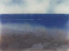 Staacks: Helen Smith : Walking the Shore