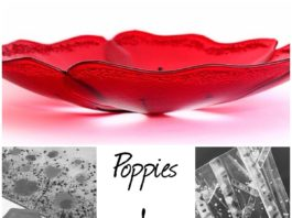 The Silver Zebra: Poppies & Trees Fused Glass Workshop-Cheshire