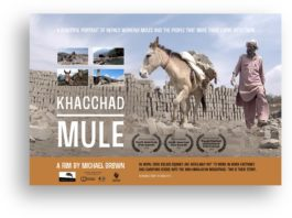 Film Screening and Q&A of the movie, 'Khacchad: Mule'