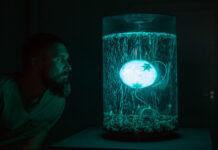 Cognitive Sensations: Beyond Biology: Robots, Telepathy and Artificial Brains