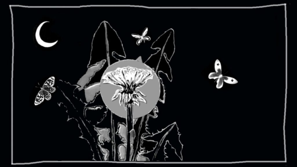 LightNight: Open Eye Gallery: WILD ORACLE: LIVE ORACLE CARD READINGS