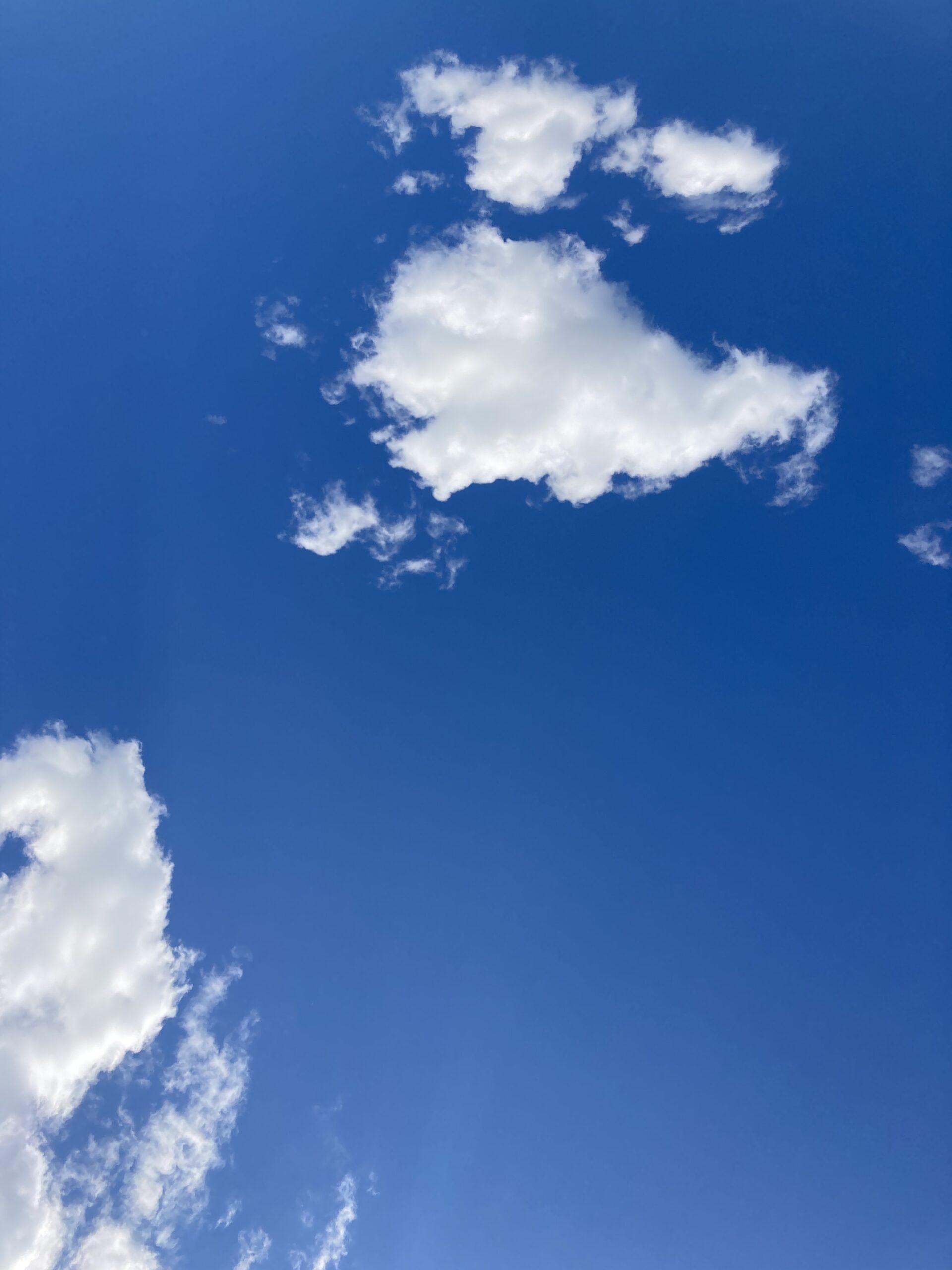 Tate Liverpool: Yoko Ono's T.V. to See The Sky